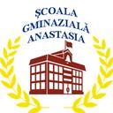 Scoala Anastasia